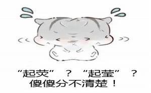 """翡翠""""起荧""""和""""起莹""""是什么?一字之差,价值却天差地别!"""