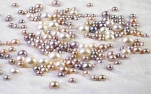 珍珠的种类有哪些?珍珠种类简介