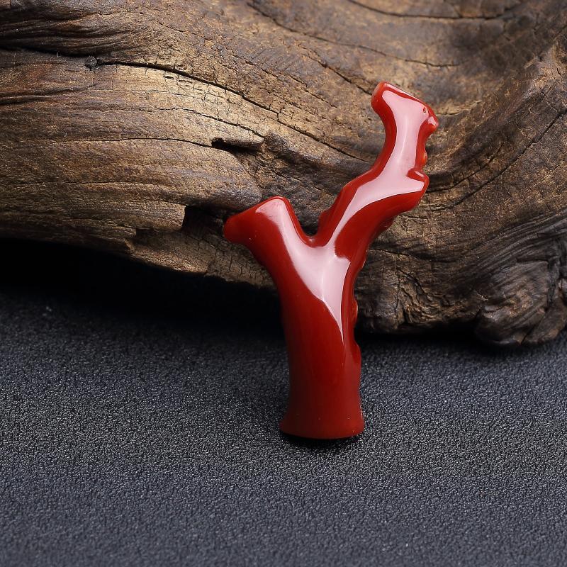 阿卡黑红珊瑚原枝